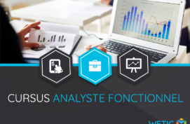 Analyste Fonctionnel